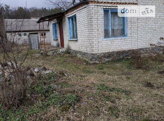 одноповерховий будинок, 85 кв. м, цегла. Продаж в Довжику (Житомирська обл.) фото 1