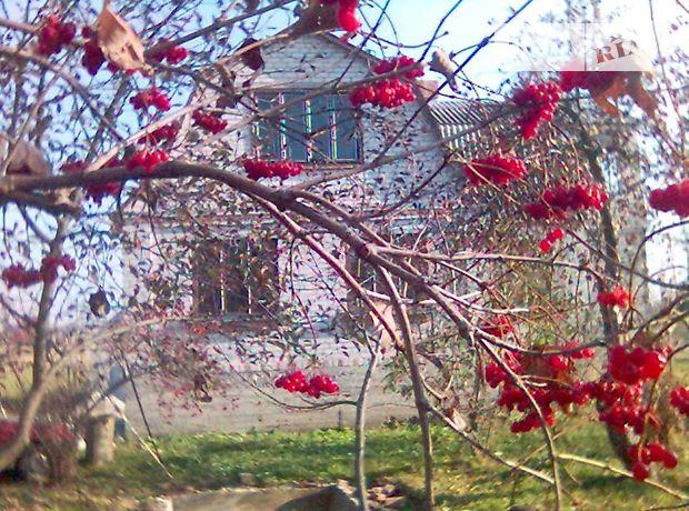 одноэтажный дом с садом, 60 кв. м, кирпич. Продажа в Млынище (Житомирская обл.) фото 1