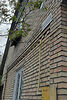 двухэтажный дом с садом, 75 кв. м, кирпич. Продажа в Черняхове (Киевская обл.) фото 3