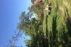 одноэтажный дом с садом, 90 кв. м, кирпич. Продажа в Кагарлыке район Кагарлык фото 3