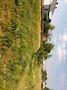одноэтажный дом с камином, 34 кв. м, брус. Продажа в Добротворе (Львовская обл.) фото 3