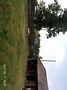 одноэтажный дом с камином, 34 кв. м, брус. Продажа в Добротворе (Львовская обл.) фото 4