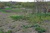 одноэтажный дом с садом, 40 кв. м, кирпич. Продажа в Комсомольском (Винницкая обл.) фото 6