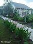 одноэтажный дом с садом, 80 кв. м, кирпич. Продажа в Нежиловичах (Киевская обл.) фото 6