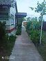 одноэтажный дом с садом, 80 кв. м, кирпич. Продажа в Нежиловичах (Киевская обл.) фото 3