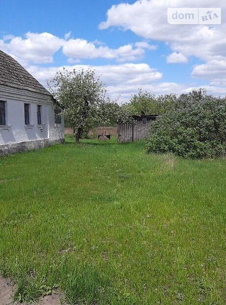 одноэтажный дом, 72.1 кв. м, кирпич. Продажа в Недашках (Житомирская обл.) фото 1