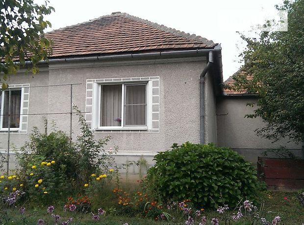 одноэтажный дом с подвалом, 110 кв. м, кирпич. Продажа в Карпатах (Закарпатская обл.) фото 1