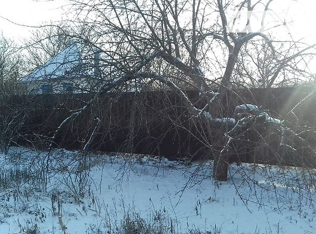 Продаж будинку, 40.3м², Дніпропетровська, Новомосковськ, c.Голубівка, Веселая