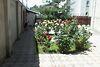двухэтажный дом с садом, 501 кв. м, ракушечник (ракушняк). Продажа в Царском Селе 2 (Одесская обл.) фото 3