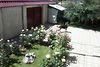 двухэтажный дом с садом, 501 кв. м, ракушечник (ракушняк). Продажа в Царском Селе 2 (Одесская обл.) фото 4