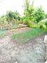 одноэтажный дом с садом, 85 кв. м, кирпич. Продажа в Полтаве район Подол фото 7