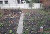 одноэтажный дом с садом, 90 кв. м, шлакоблок. Продажа в Ровно район Басов Угол фото 4