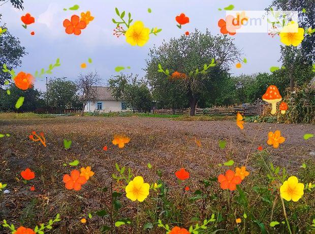 одноэтажный дом с садом, 1 кв. м, брус. Продажа в Степани (Ровенская обл.) фото 1