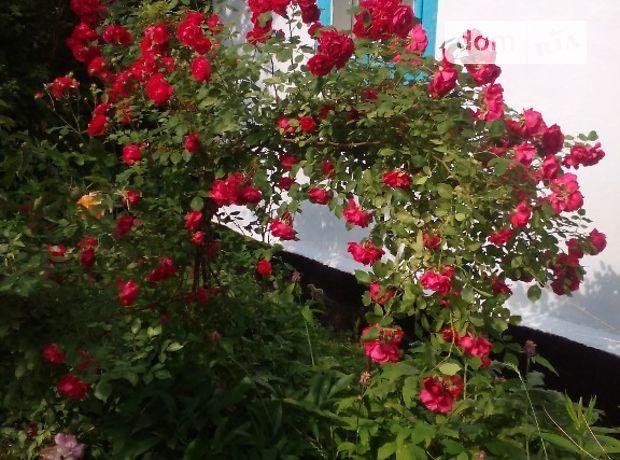 одноэтажный дом с садом, 60 кв. м, дерево и кирпич. Продажа в Головлях (Хмельницкая обл.) фото 1