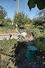 одноэтажный дом с садом, 62 кв. м, сруб. Продажа в Хотине (Сумская обл.) фото 2