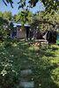 одноэтажный дом с садом, 62 кв. м, сруб. Продажа в Хотине (Сумская обл.) фото 3