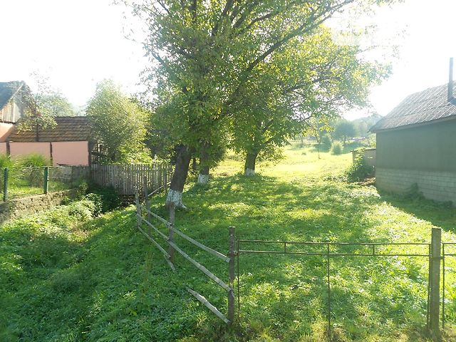 фонариков село голубиное закарпатье фото что