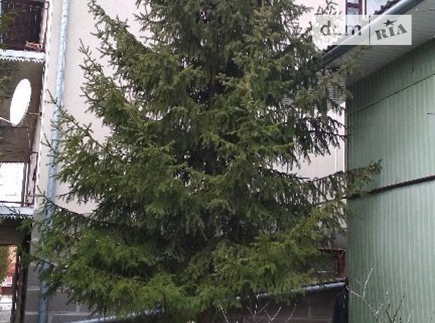 двухэтажный дом с садом, 350 кв. м, кирпич. Продажа в Тернополе район Дружба фото 1