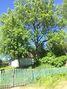 одноэтажный дом, 42 кв. м, кирпич. Продажа в Настасове (Тернопольская обл.) фото 8