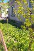 одноповерховий будинок, 90 кв. м, цегла. Продаж в Тернополі, район Східний фото 6