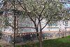 одноповерховий будинок, 92 кв. м, цегла. Продаж в Томашполі, район Томашпіль фото 5