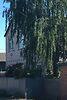 двухэтажный дом с подвалом, 160 кв. м, кирпич. Продажа в Тростянце район Тростянец фото 7