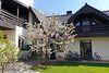 двухэтажный дом с камином, 295 кв. м, кирпич. Продажа в Ужгороде район Новый фото 3
