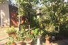 одноэтажный дом, 350 кв. м, кирпич. Продажа в Соломоново (Закарпатская обл.) фото 8