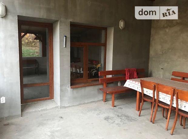 одноэтажный дом с камином, 240 кв. м, кирпич. Продажа в Цыгановцах (Закарпатская обл.) фото 1