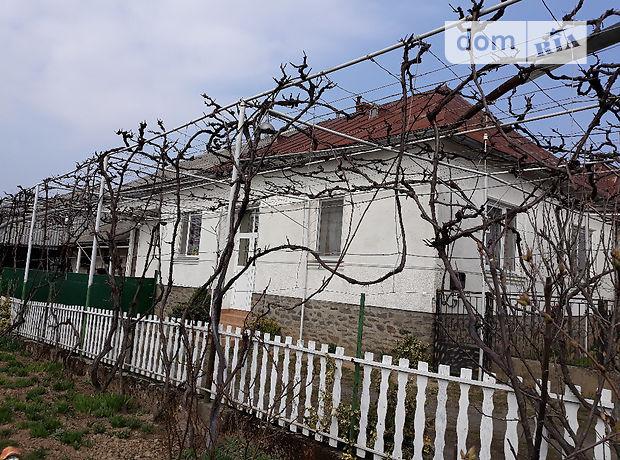 одноэтажный дом с камином, 150 кв. м, кирпич саманный. Продажа в Ярке (Закарпатская обл.) фото 1