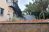 двухэтажный дом с камином, 400 кв. м, кирпич. Продажа в Агрономичном (Винницкая обл.) фото 5