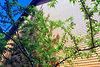 Продажа дома, 120м², Винница, р‑н.Старый город, Прибрежный тупик