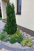 двухэтажный дом с камином, 164.9 кв. м, кирпич. Продажа в Виннице район Тяжилов фото 8