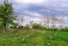 одноэтажный дом с садом, 70.5 кв. м, кирпич. Продажа в Березне (Киевская обл.) фото 4