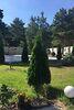 двухэтажный дом с садом, 250 кв. м, кирпич. Продажа в Низшей Дубечне (Киевская обл.) фото 7