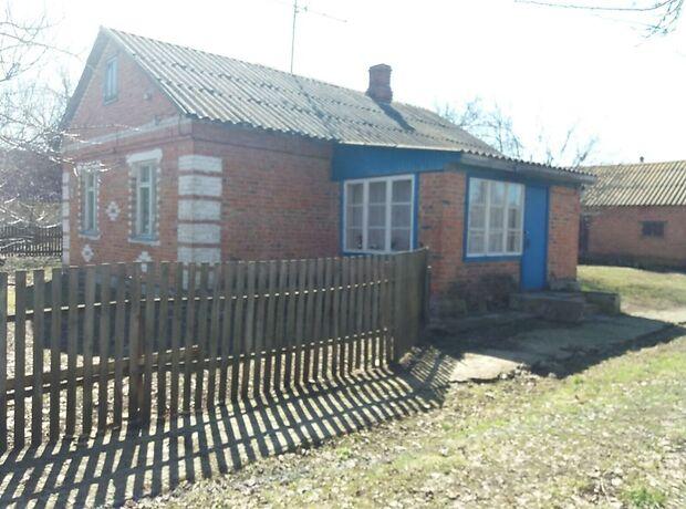 одноэтажный дом, 54 кв. м, кирпич. Продажа в Пасковщине (Киевская обл.) фото 1