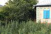 одноэтажный дом с садом, 55 кв. м, кирпич саманный. Продажа в Деньгах (Черкасская обл.) фото 2