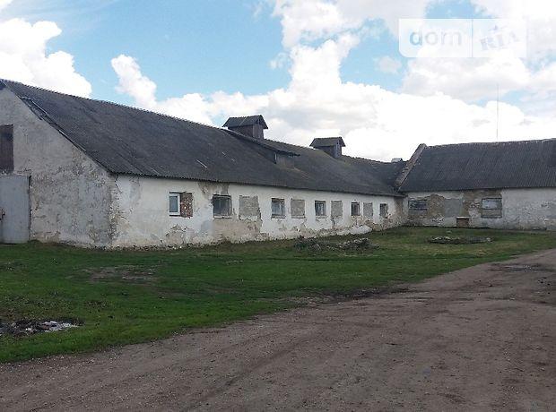 Готовый бизнес в Тернополе, продажа по, в селе Толстолуг, цена: 29 000 долларов за объект фото 1
