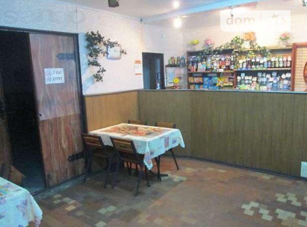 Бар, кафе, ресторан в Каменке-Днепровской, продажа по, район Каменка-Днепровская, цена: договорная за объект фото 1