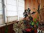 Продажа четырехкомнатной квартиры в Хмельницком, на ул. Проскуровского Подполья район Гречаны ближние фото 8
