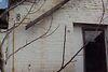 Продажа однокомнатной квартиры в Жашкове, на Сахалинская 8/4, фото 3