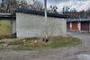 Место в гаражном кооперативе под легковое авто в Хмельницком, площадь 24 кв.м. фото 8