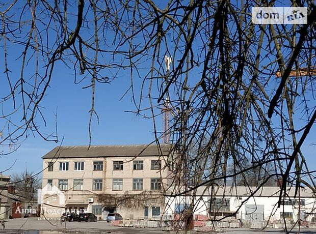 Офисное помещение на 248 кв.м. в административном здании в Херсоне фото 1