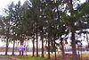 Готель в Вінниці, продаж по Немирівське шосе 32/1, в селі Писарівка, ціна: договірна за об'єкт фото 6