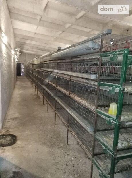 Производственное помещение в Чернигове, продажа по Боромики, в селе Боромики, цена: договорная за объект фото 1