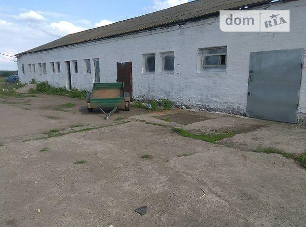 Производственное помещение в Кировограде, продажа по, в селе Оситняжка, цена: 9 500 долларов за объект фото 1