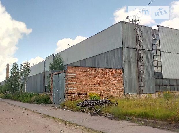 Производственное помещение в Корюковке, цена продажи: 1 000 000 долларов за объект фото 1