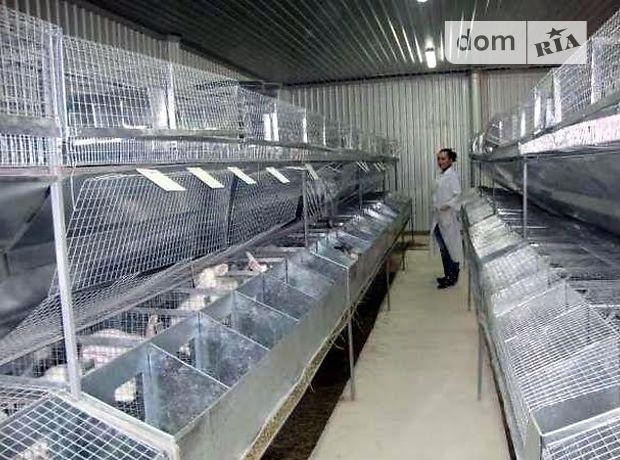 Производственное помещение в Козельце, продажа по петровское, в селе Петровское, цена: договорная за объект фото 1