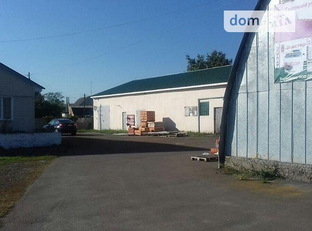 Продажа производственного помещения, Черниговская, Носовка, р‑н.Носовка