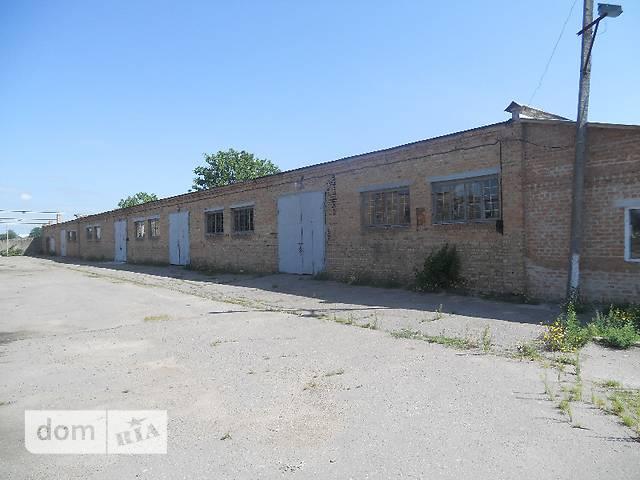 Продажа складского помещения, Киевская, Белая Церковь, Мельника  улица